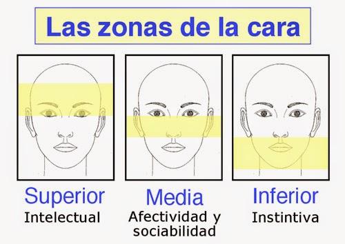 13 morfopsicologia - 13 - Morfopsicologia: O que Seus Traços Faciais Dizem Sobre a Sua Personalidade