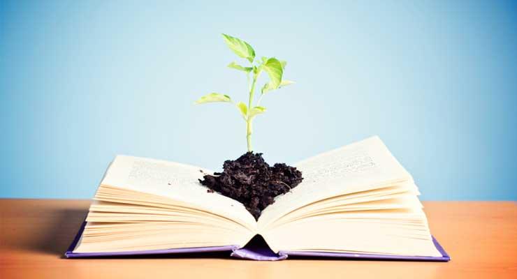 educação infantil - educa    o - A importância da Educação Infantil para o desenvolvimento