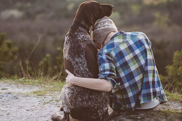 depressão - animais de estimacao ajudam lidar com depressao ansiedade e estresse - Depressão: Por que um animal de estimação pode ser mais eficaz que um antidepressivo